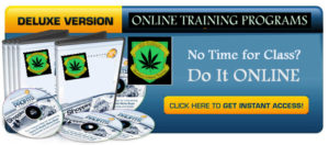 Cannabis dispensary business courses online